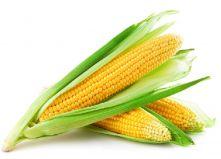 Кукуруза молодая ( шт)