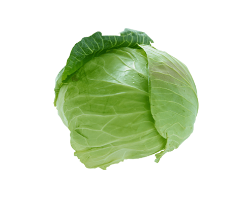 купить молодую капусту | Молодая капуста цена