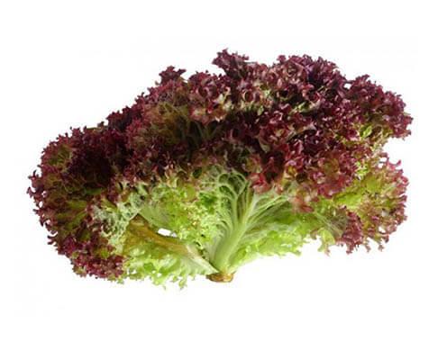 Салат лолло-росса (200г)