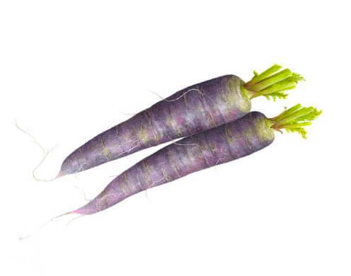 Фиолетовая морковь (под заказ)