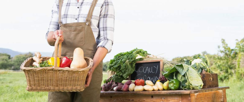 Продукты из проверенных фермерских хозяйств. Цены не завышены!